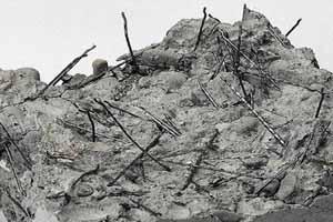 Фибробетон виды волокон бетон наливной пол